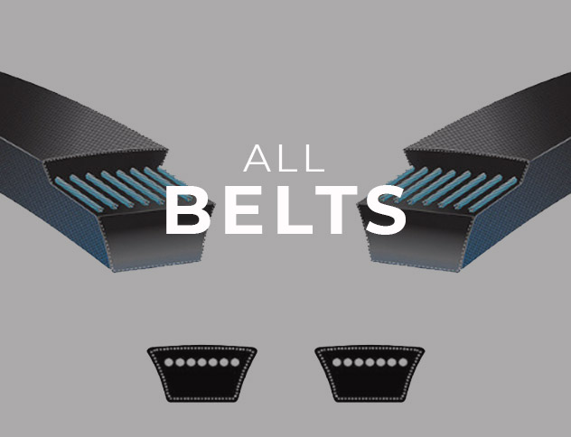 See All Belts